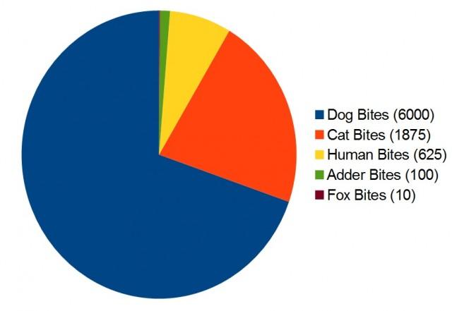 bites pie chart